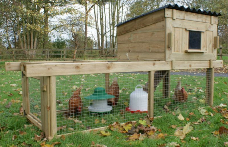 cheshire chicken coop with run